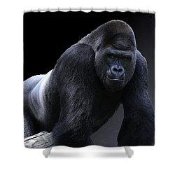 Strong Male Gorilla Shower Curtain
