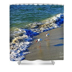 Strutting Shadows - White Ibis Strutting On The Beach Shower Curtain