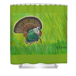 Strutting Turkey In The Grass Shower Curtain