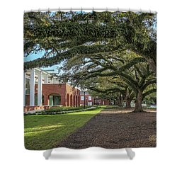 Shower Curtain featuring the photograph Student Union Oaks by Gregory Daley  PPSA