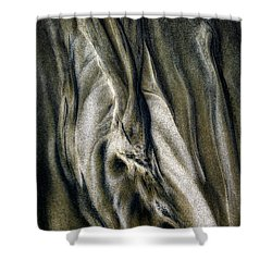 Shower Curtain featuring the photograph Study In Brown Abstract Sands by Rikk Flohr
