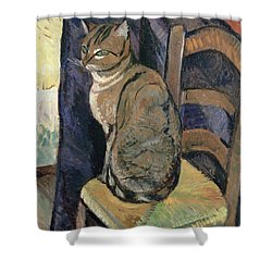 Study Of A Cat Shower Curtain by Suzanne Valadon