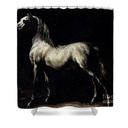 Study Of A Dapple Grey Shower Curtain by Theodore Gericault