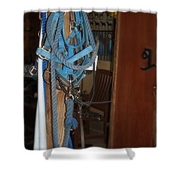 Shower Curtain featuring the painting Stuff In The Barn by Roena King