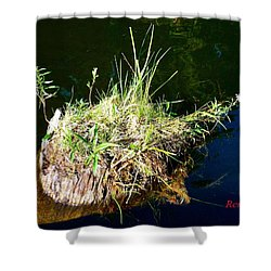 Shower Curtain featuring the photograph Stump Art 11 by Sadie Reneau