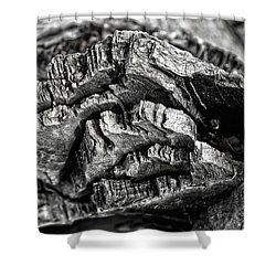 Stump Texture Shower Curtain