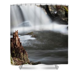 Stumped At The Secret Waterfall Shower Curtain