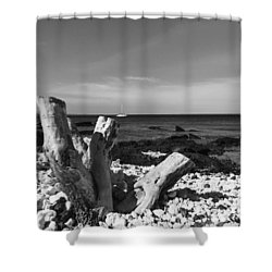 Stumped Shower Curtain by Russell Keating