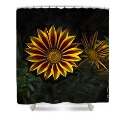 Stunning Flowers Abound Here Shower Curtain