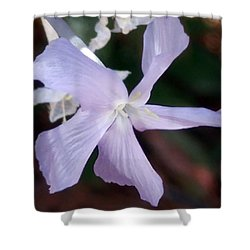 Stunning New Mexico Purple Wildflower Shower Curtain