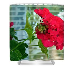 Stunning Red Geranium Shower Curtain