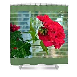 Stunning Red Geranium Shower Curtain