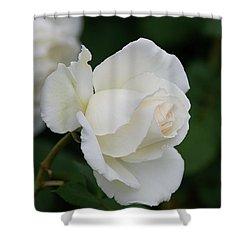 Stunning White Tineke Rose Shower Curtain