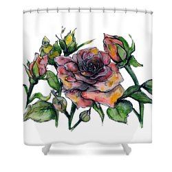 Stylized Roses Shower Curtain