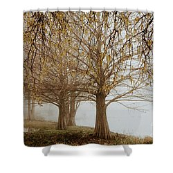 Shower Curtain featuring the photograph Sublime by Iris Greenwell