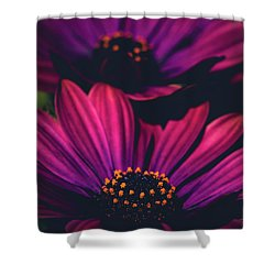 Sublime Shower Curtain by Sharon Mau