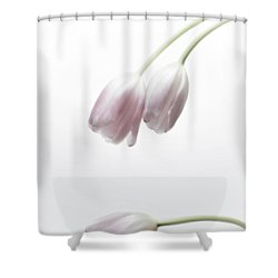 Submission Shower Curtain