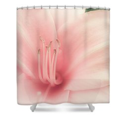 Subtle And Pink Shower Curtain