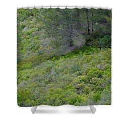Subtle Spring Shower Curtain
