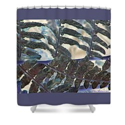 Shower Curtain featuring the photograph Subtleties by Chris Anderson