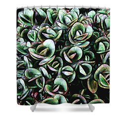 Succulent Fantasy Shower Curtain