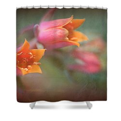 Succulent Flower Shower Curtain by Catherine Lau