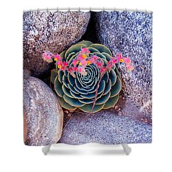 Succulent Flowers Shower Curtain by Mark Barclay