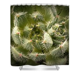 Succulent Pride  Shower Curtain