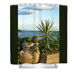 Succulents By The Sea Shower Curtain