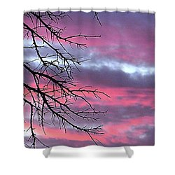 Such A #gorgeous #pink #texas Shower Curtain