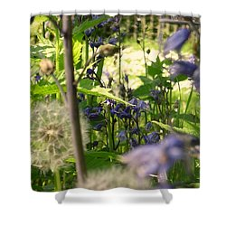 Shower Curtain featuring the photograph Such A Perfect Day  by Paul Lovering