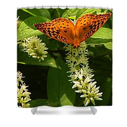 Such Lovely Wings Shower Curtain by Byron Varvarigos