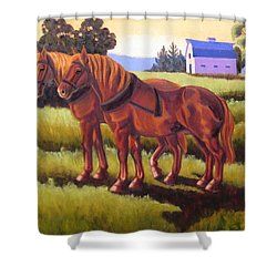 Suffolk Punch Day Is Done Shower Curtain