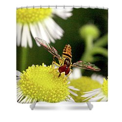 Shower Curtain featuring the photograph Sugar Bee Wings by Meta Gatschenberger