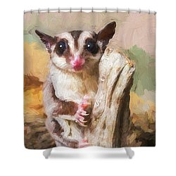 Sugar Glider - Painterly Shower Curtain