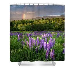 Shower Curtain featuring the photograph Sugar Hill Lupines by Bill Wakeley