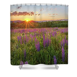 Sugar Hill New Hampshire Lupine Shower Curtain by Bill Wakeley