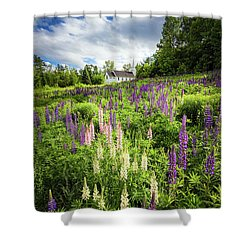 Shower Curtain featuring the photograph Sugar Hill by Robert Clifford