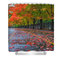 Sugar Maple Drive Shower Curtain by Ken Stanback