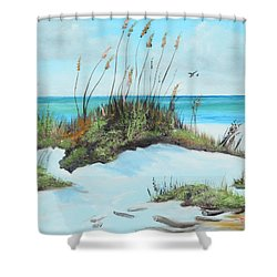 Sugar White Beach Shower Curtain