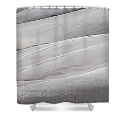 Sullied Shower Curtain