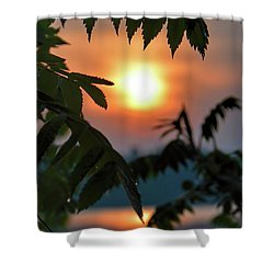 Sumac Sunrise At The Lake Shower Curtain by Henry Kowalski