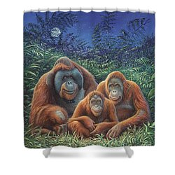 Sumatra Orangutans Shower Curtain