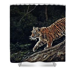 Sumatran Cub Shower Curtain