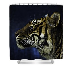 Sumatran Tiger Profile Shower Curtain by Avalon Fine Art Photography