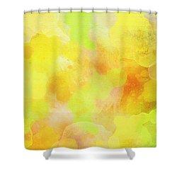 Summer 02 Shower Curtain