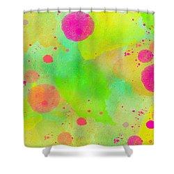 Summer 04 Shower Curtain
