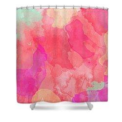 Summer 06 Shower Curtain