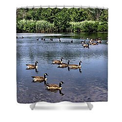 Summer At The Park Shower Curtain