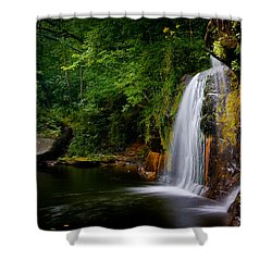 Shower Curtain featuring the photograph Summer At Wolf Creek Falls by Rikk Flohr